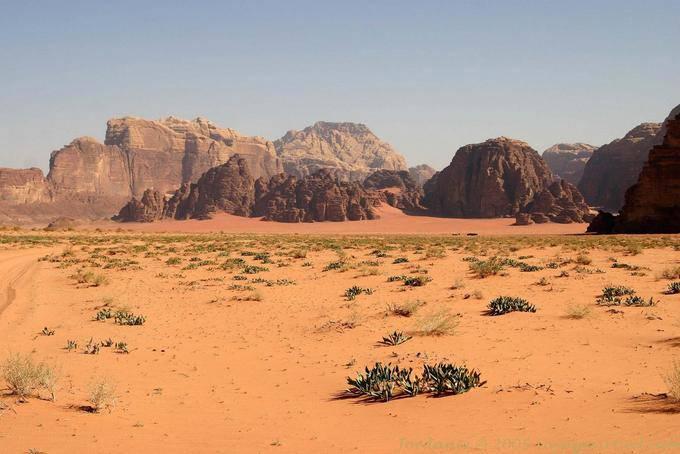 Wadi Rum 737