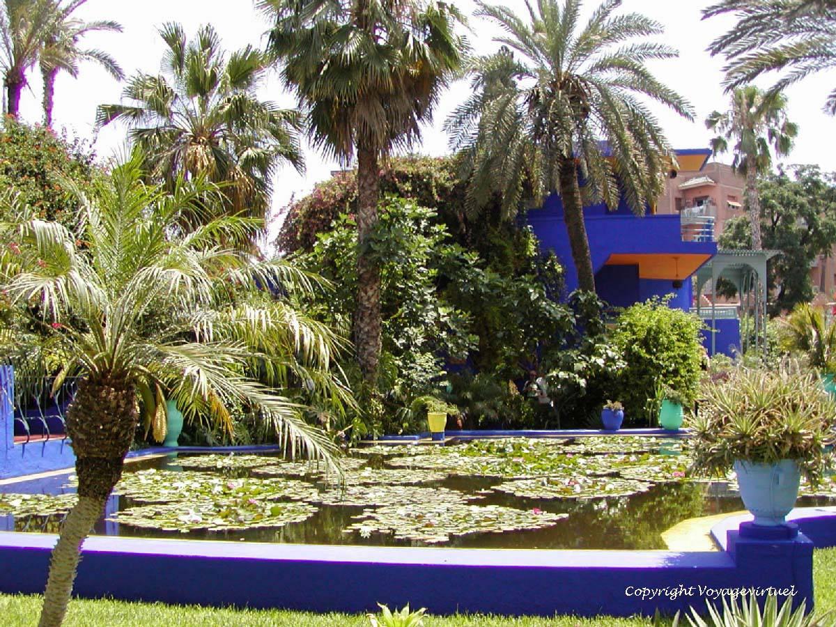 Pond Basin Lilie Jardin Majorelle Marrakesch Marokko