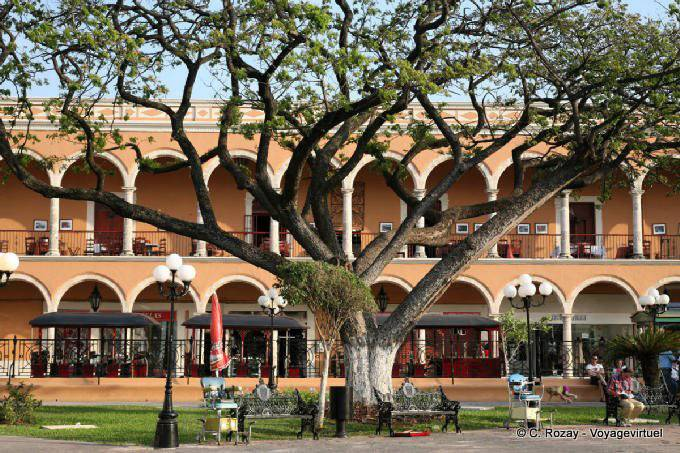Campeche Zocalo Arbre Et Arcades 15