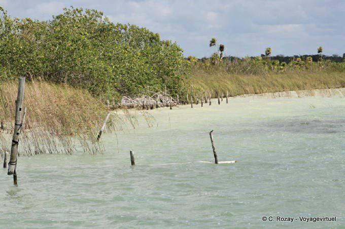 Muyil Laguna De Muyil 14