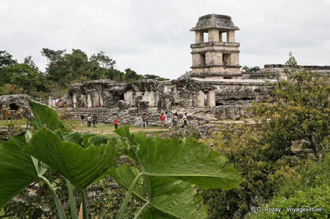 Palenque El Palacio 34