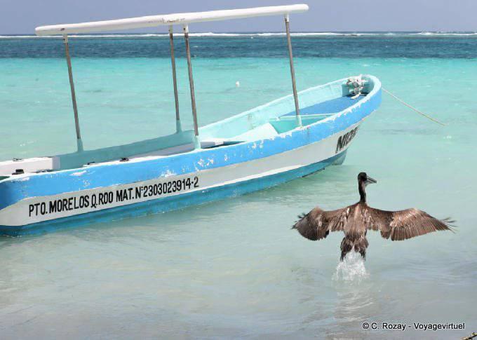 Puerto Morelos Envol Du Pelican 44