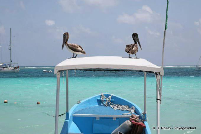 Puerto Morelos Le Regard Des Pecheurs 46
